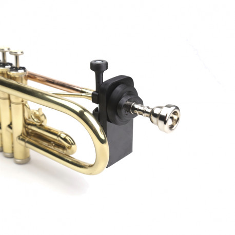 QuantiForce Brass Slim