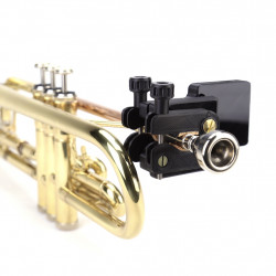 QuantiForce Brass LIVE